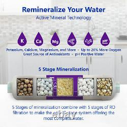 10-Stage RO Reverse Osmosis Alkaline pH+ Water Filter System Clear Gauge 50 GPD