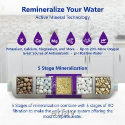 Alkaline Reverse Osmosis Water Filtration System Mineral RO with Gauge 50 GPD